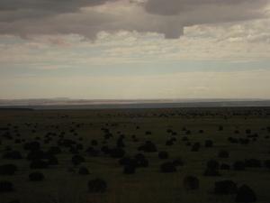 To the Far Horizon    (c)2011 Randy D. Bosch